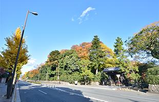 京都御所の写真